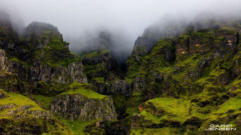 Iceland-skogar