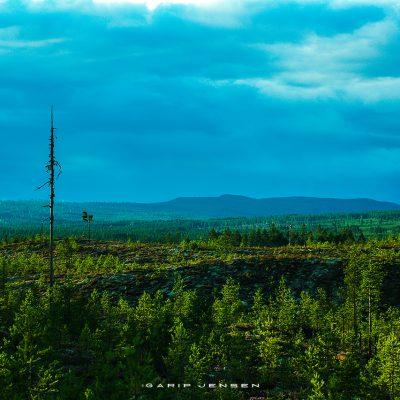 Bonus-Gallery-Norrland