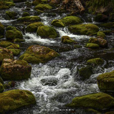 brook-at-njupeskär-Sweden