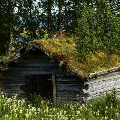 charming-up-north-Sweden