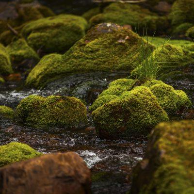 river-up-north-Sweden